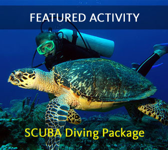 Featured Activity Roatan Accommodation and Activities