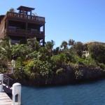 Mangrove Dock Roatan